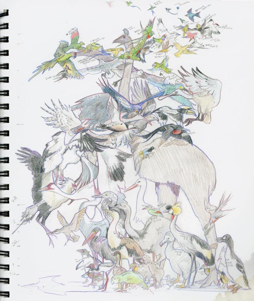 Runde_Birdswirl
