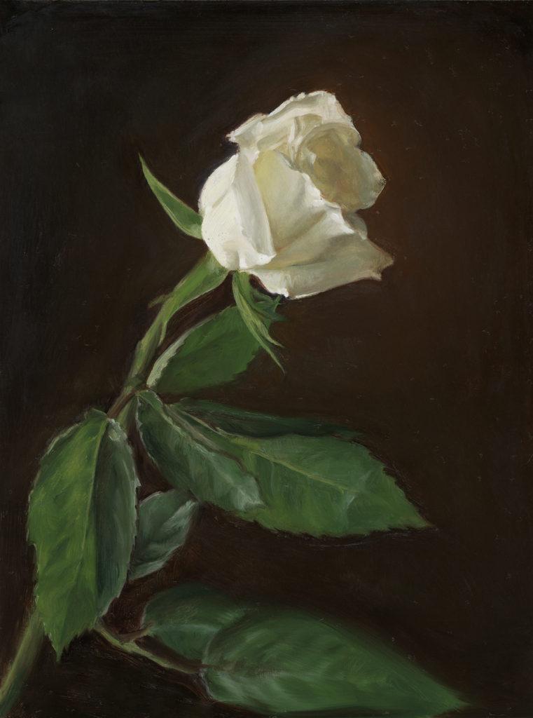 runde_whiterose
